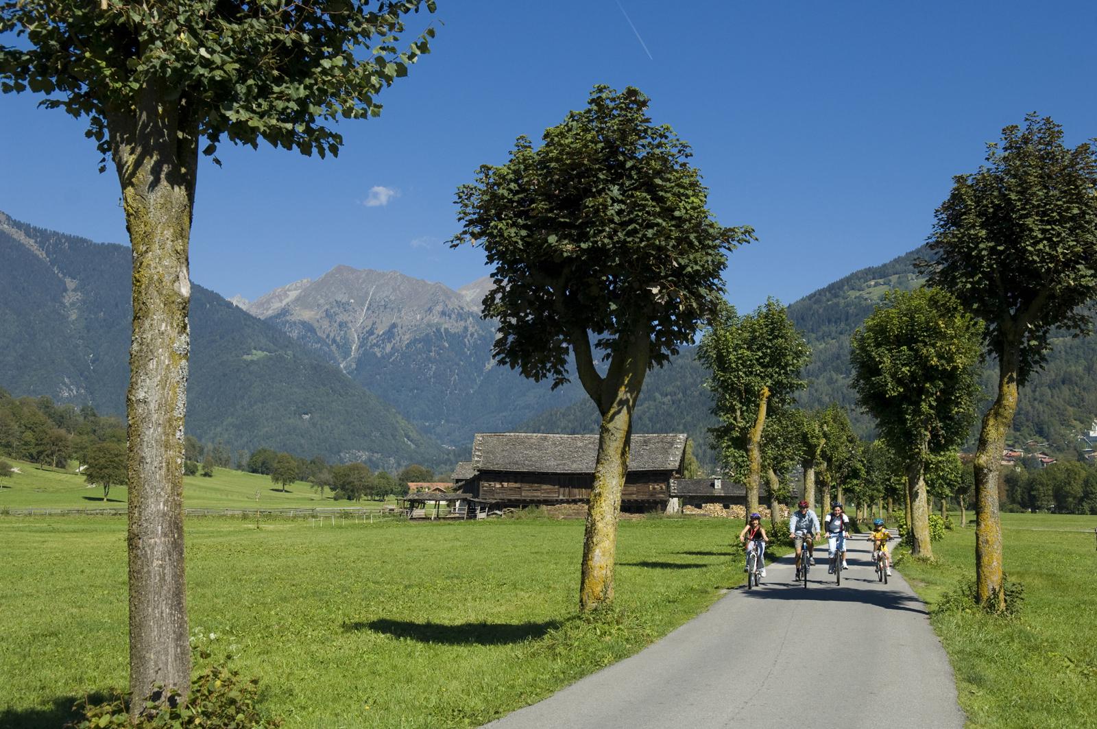 Piste Ciclabili Trentino