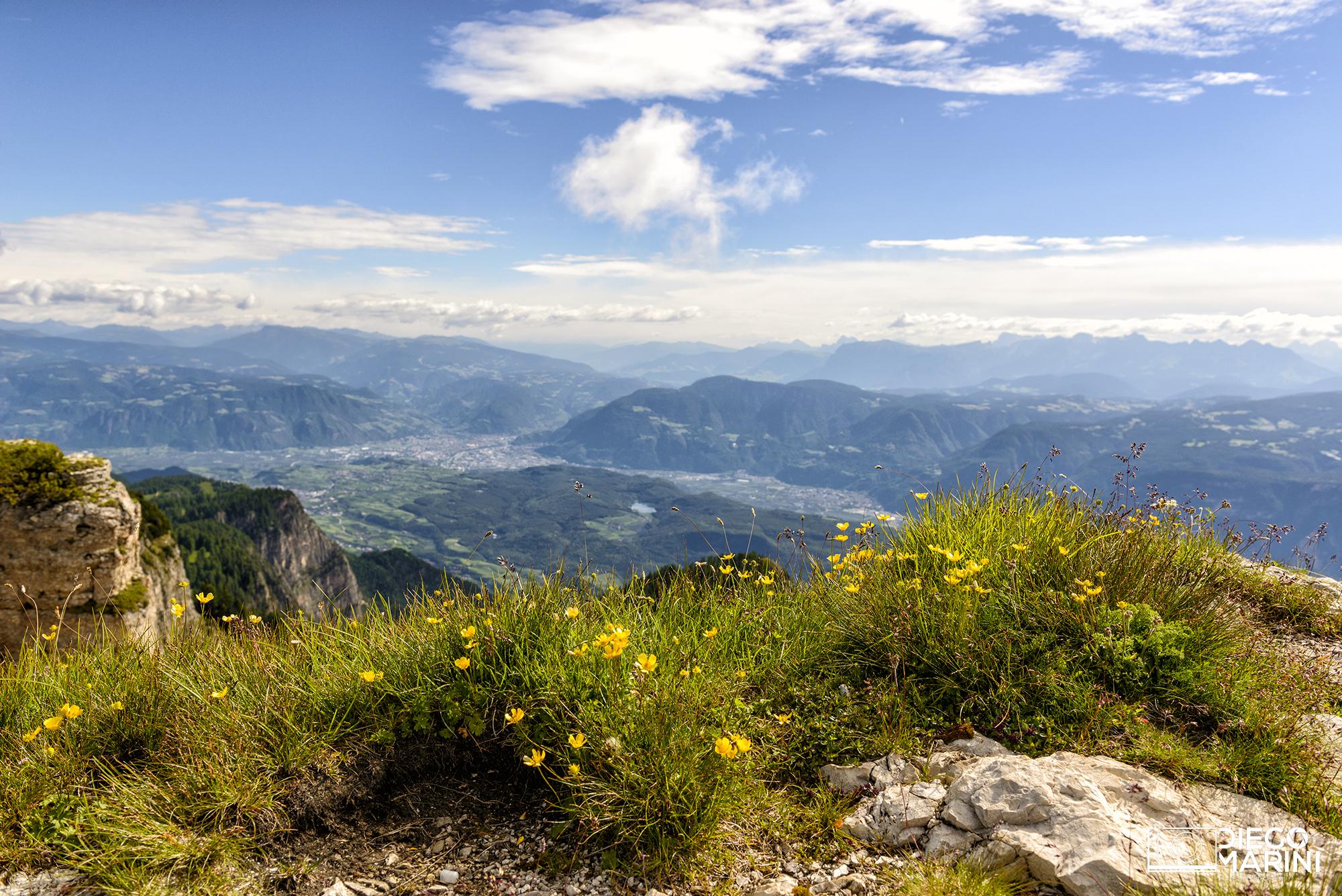Monte Roen