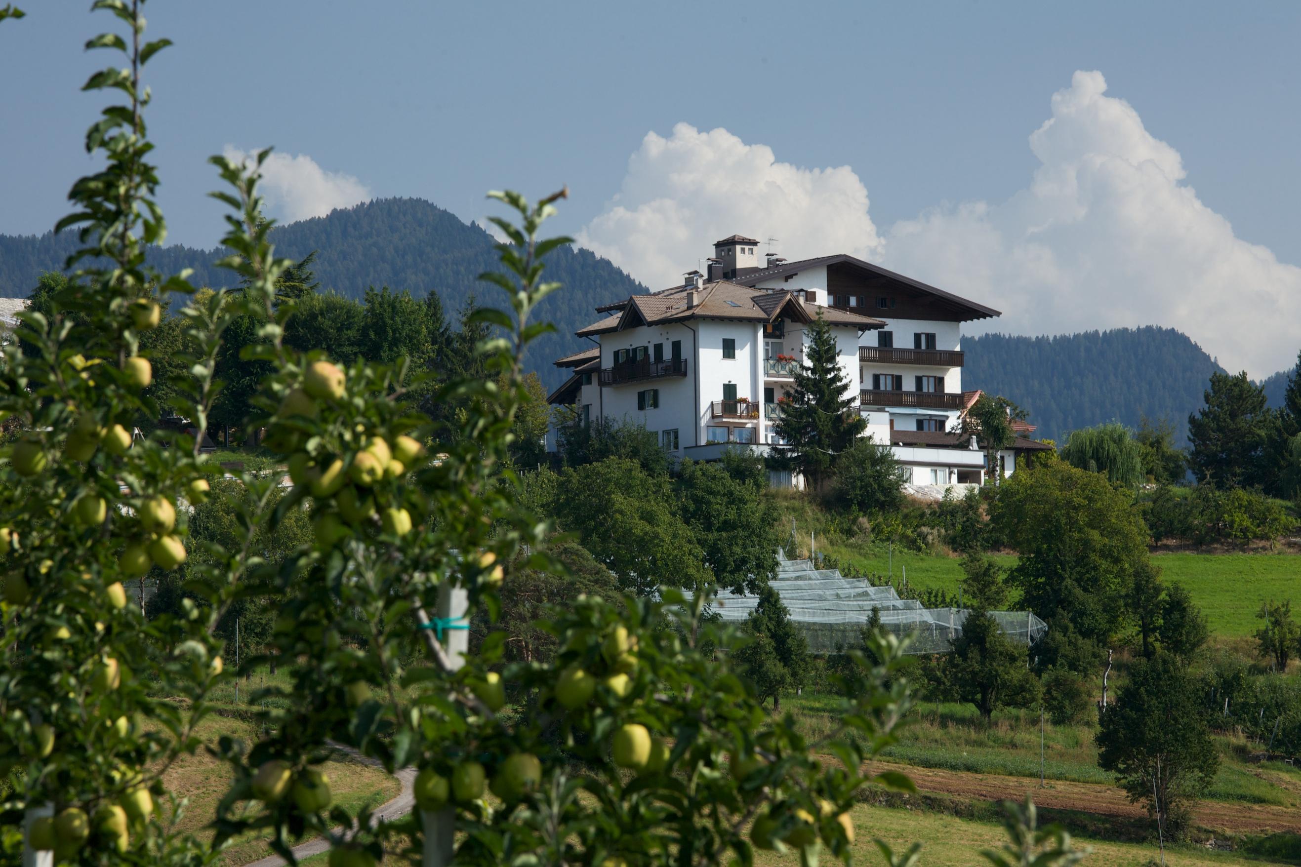 Hotel Alla Torre | Smarano